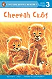 Cheetah Cubs (Penguin Young Readers, Level 3) (English Edition)